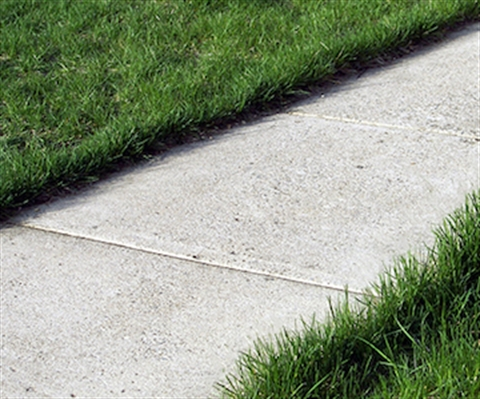 sidewalk closeup with green grass on either side.